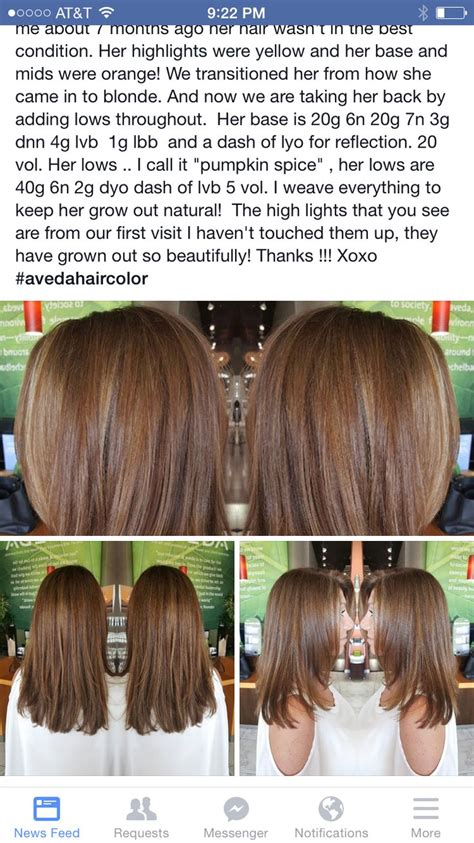 aveda color and gray hair 25 best images about aveda swatches on pinterest