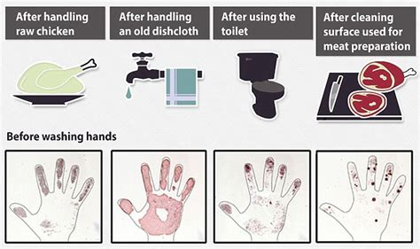 diseases from not washing hands after bathroom diseases from not washing hands after bathroom 28 images