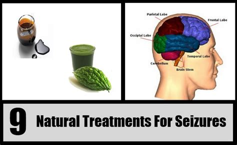 home remedies for seizures 9 treatments for seizures how to treat seizures naturally search herbal