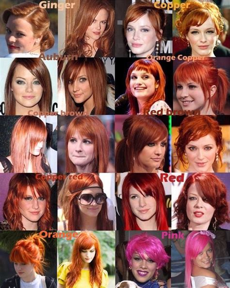 ginger hair chart charts hair color charts and hayley williams on pinterest