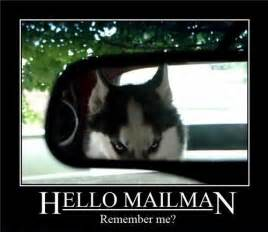 Funny Hello Meme - hello mailman funny memes