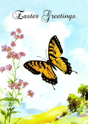 easter butterfly flowers  happy easter ecards greeting cards