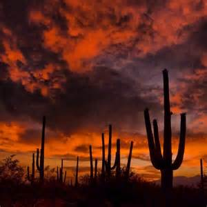 465 best images about beautiful nature deserts canyons