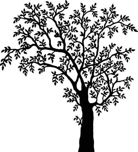 printable stencils tree tree stencils www imgkid com the image kid has it