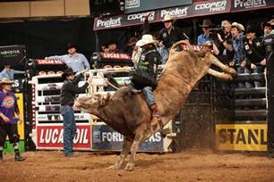 pbr built ford tough series vs pbr professional bull