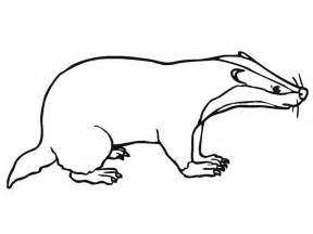 badger color free coloring pages