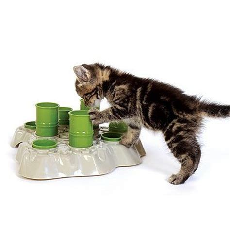 Puzzle Feeders Cats cat puzzle feeder why your cat needs a puzzle feeder diy
