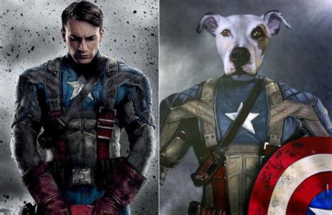 45 best images about fav movie characters actors on captain america photos hilarious oil paintings of