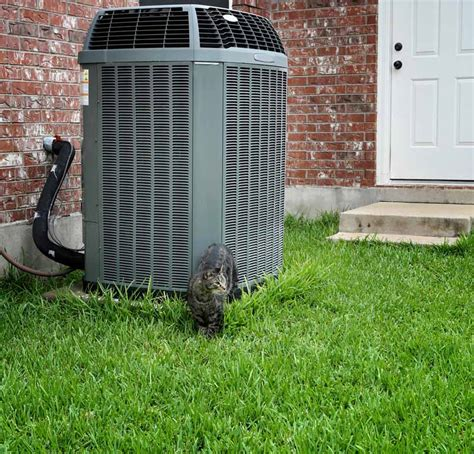 Ac Outdoor Unit How To Landscape Around Your Outdoor A C Unit Interior