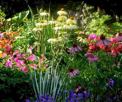 rustic flower garden ideas native home garden design