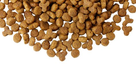 puppy food amount pet valu section bosley s by pet valu pet store pet food treats and supplies