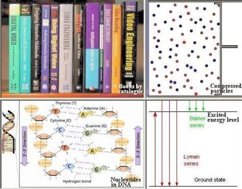 the cooperating universe how nature creates complexity books information