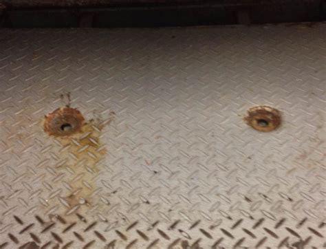 cowleys pest services pests we treat photo album drain