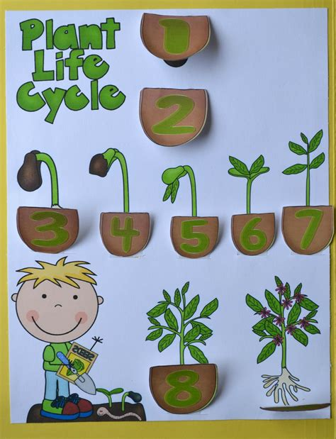 plant crafts for bible for god makes flowers and plants for preschool