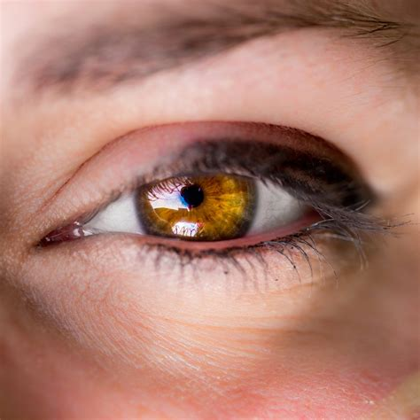 imagenes de ojos naturales los 8 colores de ojos m 225 s raros del mundo la voz del muro