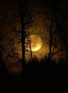 bright silver moon a journey story books beautiful moon fullmoon harvestmoon autumn fall