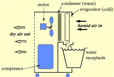 how to dehumidify a room water the source of worth more than gold in an emergency
