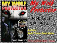 my wolf protector series 2 my wolf protector wolf town guardians 2 by wynters