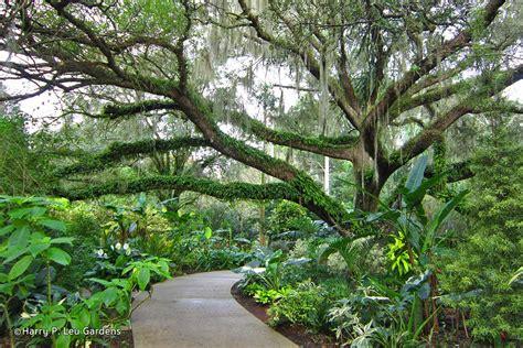 Leu Botanical Gardens Harry P Leu Gardens Orlando Flower Garden In Orlando