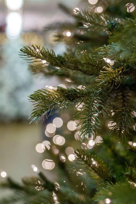 artificial trees dallas tree store artificial trees in dallas decorator s warehouse