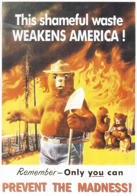 Only You Can Prevent Forest Fires Meme - flashback friday only you can prevent forest fires