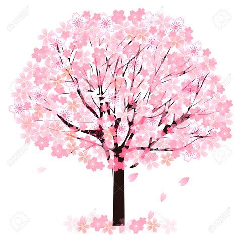 cherry blossom clip blossom clipart tree pencil and in color blossom