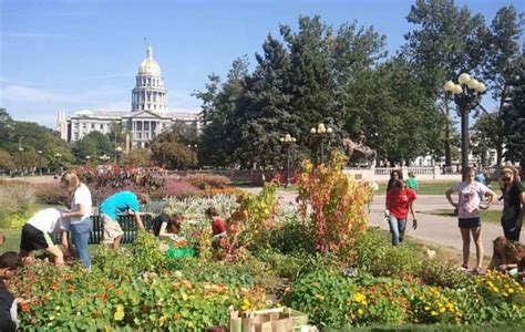 horticultura urbana huerto balcon huertos urbanos bah 237 a de c 225 diz 191 parques comestibles