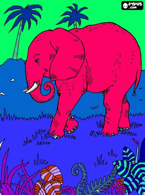 ellie elephant coloring page ellie the eleph coloring page printable ellie the eleph