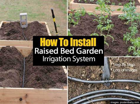 install  raised bed garden irrigation system