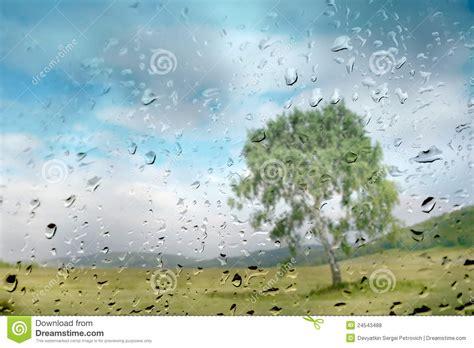 Imagenes Libres Lluvia   gotas de la lluvia en la ventana fotos de archivo libres