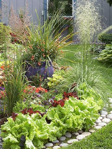 Edible Garden Plants by 17 Best Images About Beautiful Edible Landscapes And