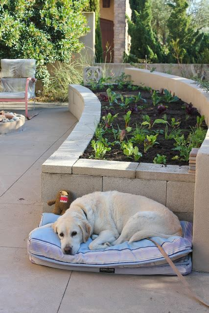Patch Aufnäher Selber Machen by 13 Unique Diy Raised Garden Beds