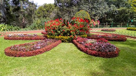 125 hotels near ooty botanical garden ooty book now at