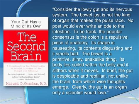 gut intelligence the wisdom to the the guts to do something about it books the gut brain connection an inside look at depression