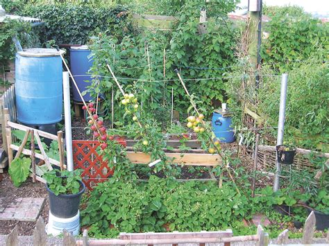 what is permaculture permaculture magazine