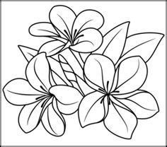 printable rainforest flowers rainforest flowers coloring pages miss adewa 6deb9d473424