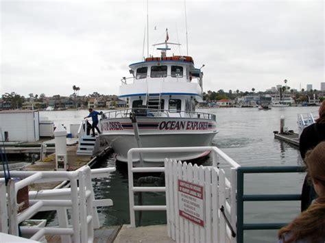 cheap boat rentals in newport beach newport landing whale watching newport beach ca hours