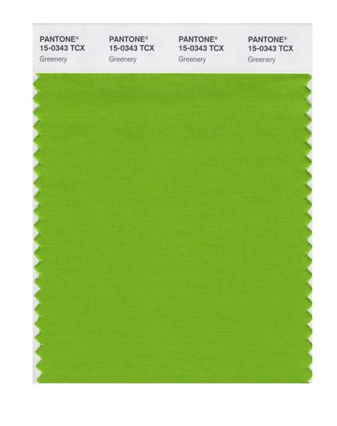 pantone colors of the year 2017 color of the year is greenery pantone says time com