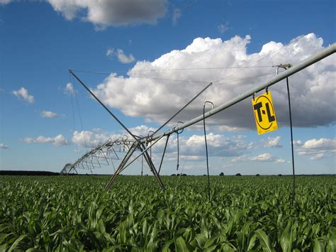 irrigated corn comprehensive assessment of water management in