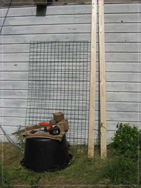 membuat hidroponik vertikal cara membuat hidroponik vertikal tanamanbaru