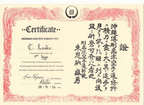 Grading ? yellow belt (9th kyu)   Goju Ryu ? My Journey