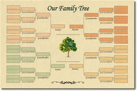 one sided family tree template family crests and coats of arms by house of names