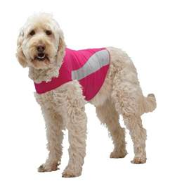 thundershirts for dogs thundershirt anxiety treatment jacket