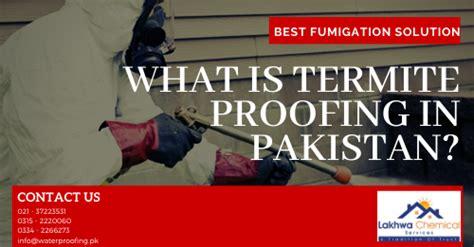 termite proofing  pakistan waterproofing