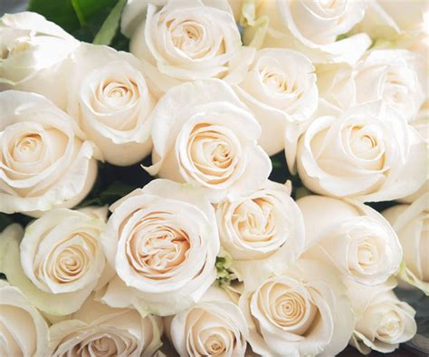 s day meaning what s day flowers really bt