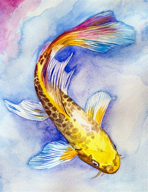 Koi Water Color 18 Warna butterfy koi watercolor by goldfish account on deviantart