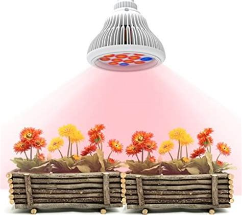 cheap grow light systems best grow light for indoor plants small medium large