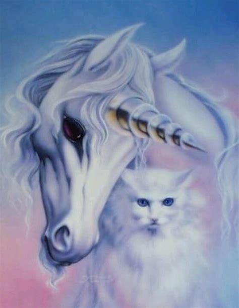 wallpaper cat unicorn unicorn cat magical unicorns