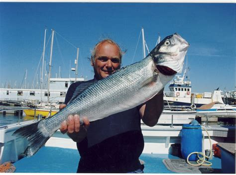 fishing boat hire plymouth size matters plymouth fishing charter boat hire sea angler