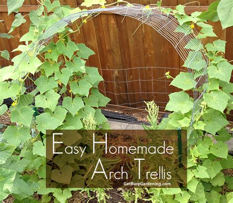 Vegetable Garden Trellis Designs Cucumber Trellis Diy How To Make A Simple Cucumber Arch